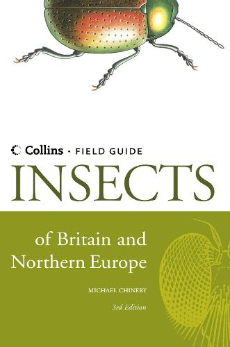Insects of Britain and Northern Europe - Collins Field Guide (Hardback)
