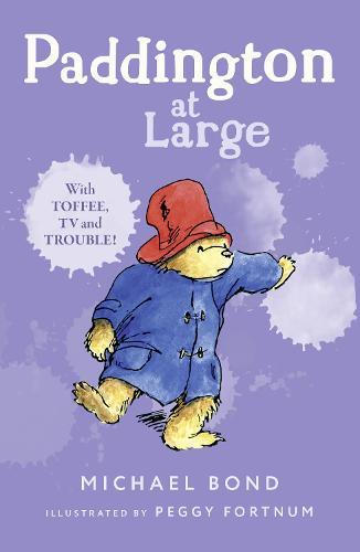 Paddington At Large (Paperback)