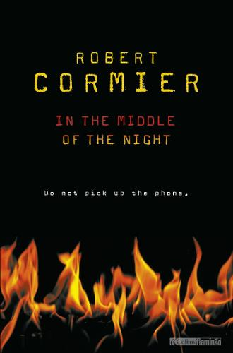 In The Middle Of The Night (Paperback)