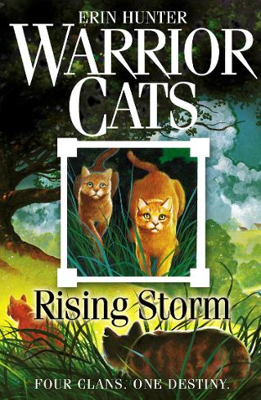 Rising Storm - Warrior Cats 4 (Paperback)