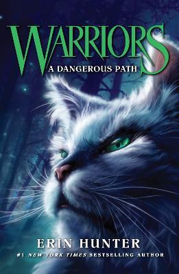 A Dangerous Path - Warrior Cats 5 (Paperback)