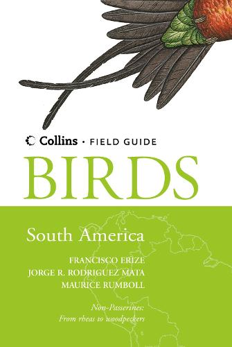Birds of South America: Non-Passerines - Collins Field Guide (Hardback)