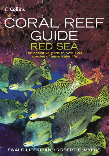 Coral Reef Guide Red Sea (Paperback)