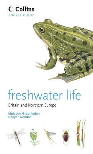 Freshwater Life - Collins Pocket Guide (Paperback)