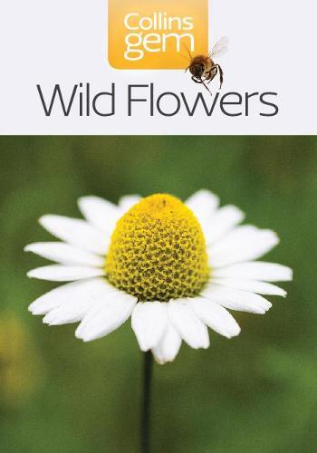 Wild Flowers - Collins Gem (Paperback)