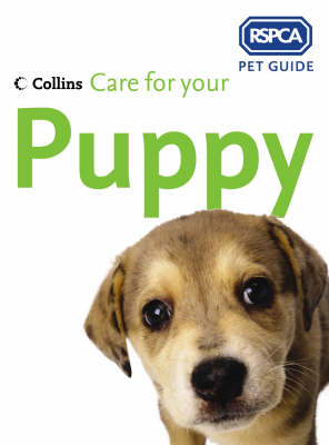 RSPCA: Care For Your Puppy (Paperback)