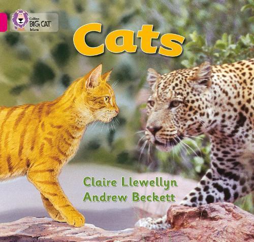 Cats: Band 01b/Pink B - Collins Big Cat (Paperback)