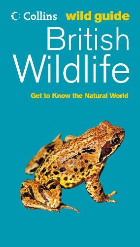 British Wildlife - Collins Wild Guide (Paperback)