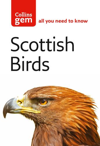 Scottish Birds - Collins Gem (Paperback)