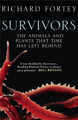 Survivors: The Animals and Plants That Time Has Left Behind (Paperback)