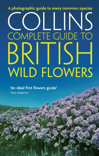 British Wild Flowers: A Photographic Guide to Every Common Species - Collins Complete Guide (Paperback)