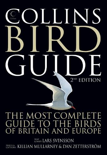Collins Bird Guide (Paperback)