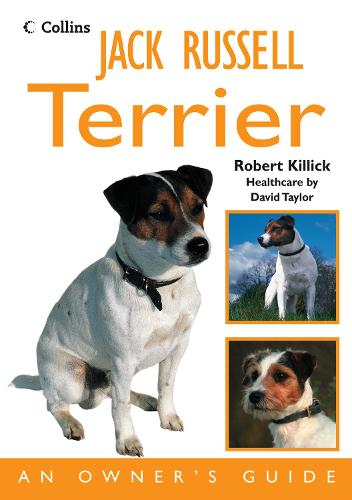 Jack Russell Terrier: An Owner's Guide (Paperback)