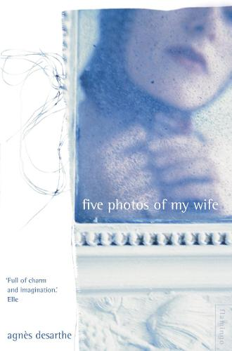 Five Photos of My Wife (Paperback)