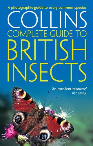 British Insects: A Photographic Guide to Every Common Species - Collins Complete Guide (Paperback)