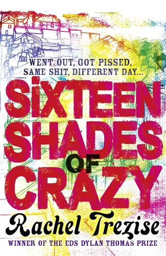 Sixteen Shades of Crazy (Paperback)