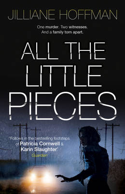 All the Little Pieces (Hardback)