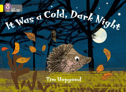 It Was a Cold Dark Night by Tim Hopgood, book suggested for Autumn sensory story.