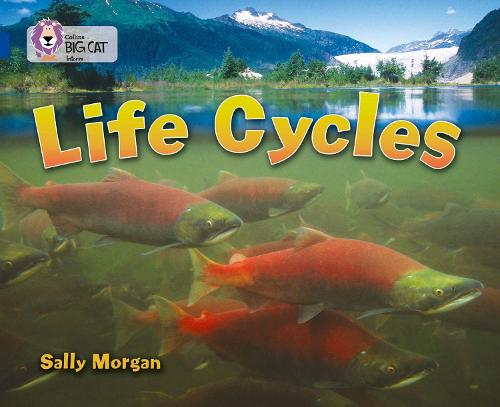 Life Cycles: Band 16/Sapphire - Collins Big Cat (Paperback)