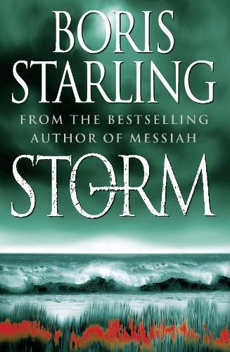 Storm (Paperback)