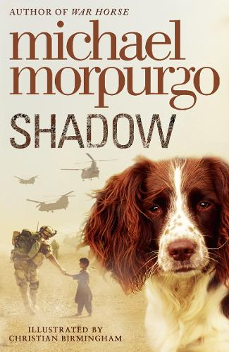 Shadow (Paperback)