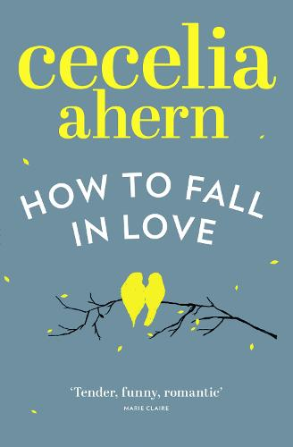 How to Fall in Love (Paperback)