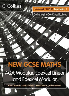 Homework VLE Foundation 1 - New GCSE Maths (CD-ROM)