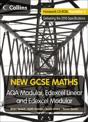 Homework VLE Foundation 2 - New GCSE Maths (CD-ROM)