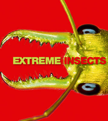 Extreme Insects (Paperback)