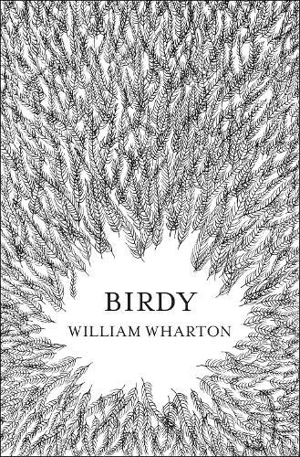 Birdy (Paperback)