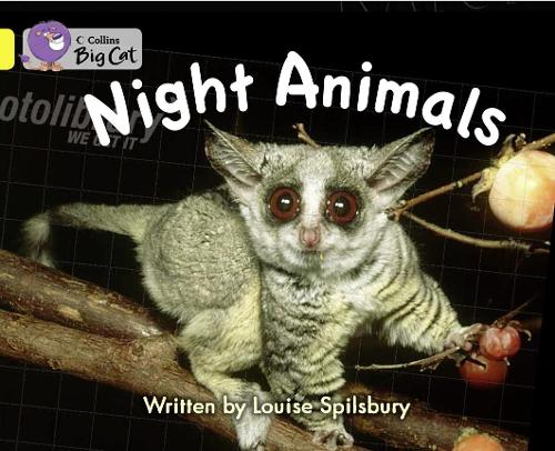 Night Animals Workbook - Collins Big Cat (Paperback)