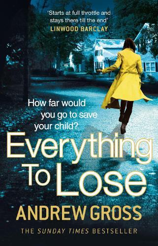 Everything to Lose (Paperback)