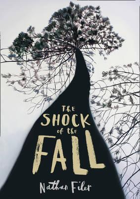 The Shock of the Fall (Hardback)