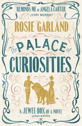 The Palace of Curiosities (Paperback)