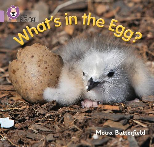 What's in the Egg?: Band 00/Lilac - Collins Big Cat (Paperback)