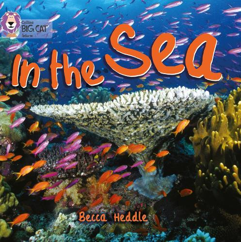In the Sea: Band 01b/Pink B - Collins Big Cat (Paperback)