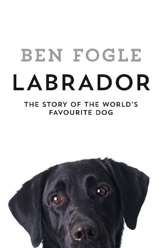Cover of the book, Labrador: The Story of the World's Favourite Dog.