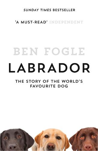 Labrador: The Story of the World's Favourite Dog (Paperback)