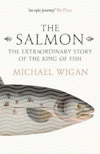 The Salmon: The Extraordinary Story of the King of Fish (Paperback)