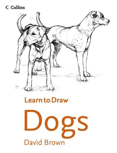 Collins Learn to Draw Dogs (Paperback)