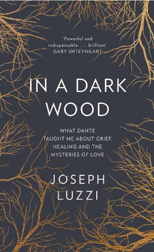 In a Dark Wood: What Dante Taught Me About Grief, Healing, and the Mysteries of Love (Hardback)