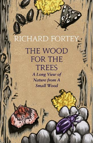 The Wood for the Trees: The Long View of Nature from a Small Wood (Hardback)