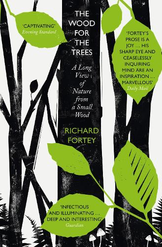The Wood for the Trees: The Long View of Nature from a Small Wood (Paperback)