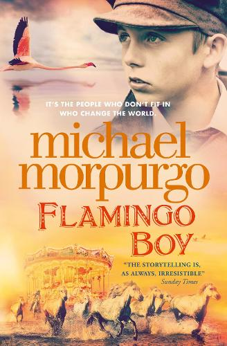 Flamingo Boy (Paperback)