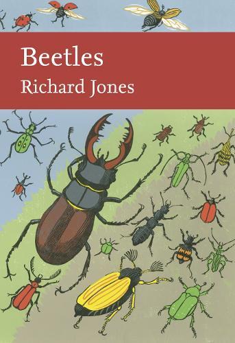 Beetles - Collins New Naturalist Library 136 (Hardback)