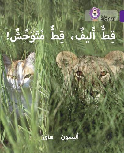 Tame Cat, Wild Cat: Level 8 - Collins Big Cat Arabic Reading Programme (Paperback)