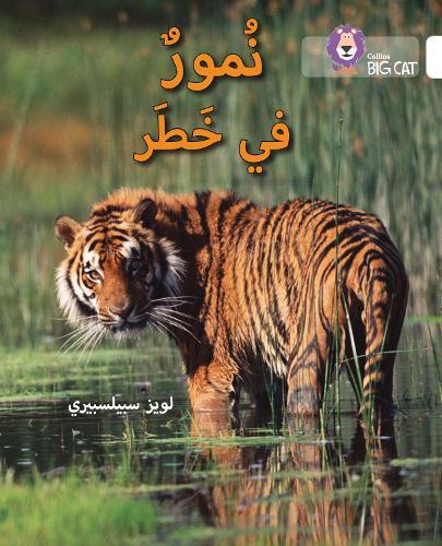 Tigers in Danger: Level 10 - Collins Big Cat Arabic Reading Programme (Paperback)
