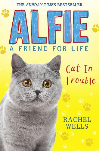 Alfie Cat in Trouble (Paperback)