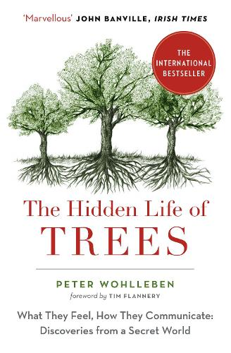 The Hidden Life of Trees by Peter Wohlleben | Waterstones