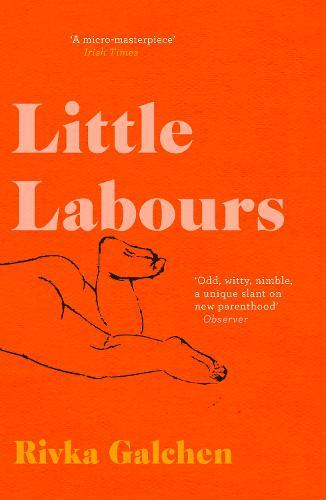Little Labours (Paperback)